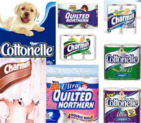 Who Makes Northern Toilet Paper - competitive intelligence toilet paper wars charmin vs