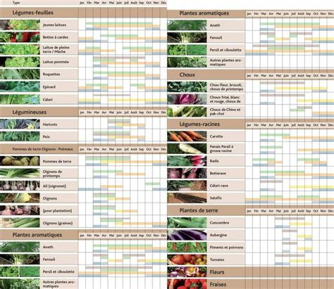 Calendrier Plantations Potager Best 25 Calendrier Plantation Ideas On