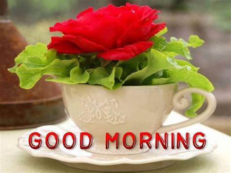 ver imagenes de good morning 10 im 225 genes etiquetadas con buenos d 237 as en ingl 233 s