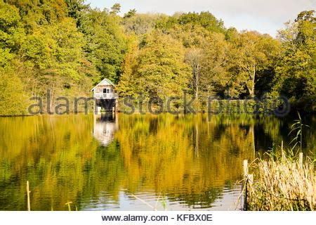 Ebeauties October 27th by Autumn Colours At Winkworth Arboretum In Surrey Uk Stock
