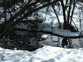 This gif has everything art water nature snow