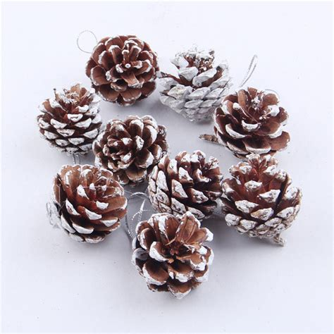 online buy wholesale pine cones sale from china pine cones