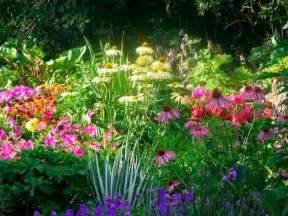Summer Garden Flowers Summer Flower Sun Summer Flower