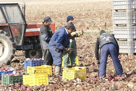 ministero dell interno nulla osta lavoro decreto flussi stagionali 2012 notizie cislveneto it