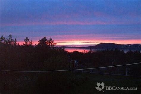 cedar house bed and breakfast rocky harbour bed and breakfast cedar house bed and breakfast