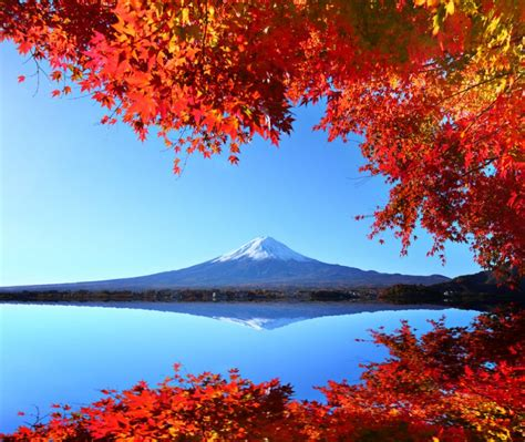 colors of autumn autumn colors in japan 2017 fall foliage forecast japan