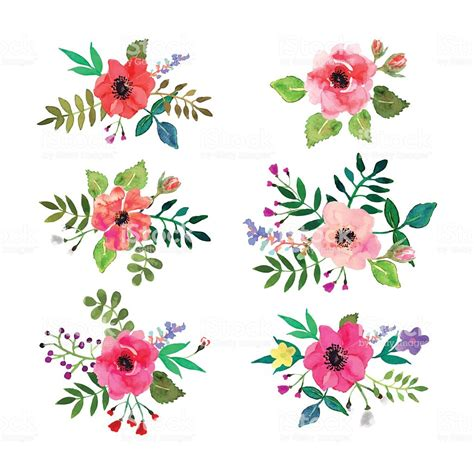 Flowers Set by Vector Flowers Set Floral Collection With Watercolor