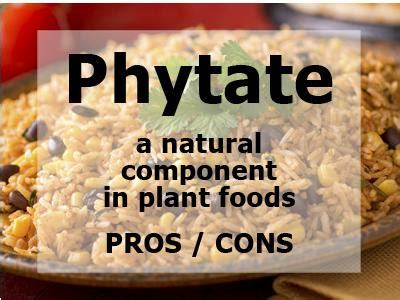 whole grains pros and cons all resources the whole grains council