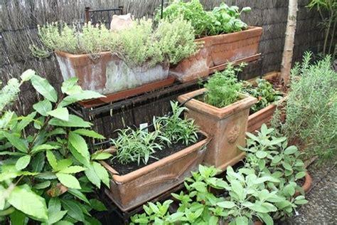 Bella Creare Un Orto In Giardino #1: orto-e-giardino_NG2.jpg