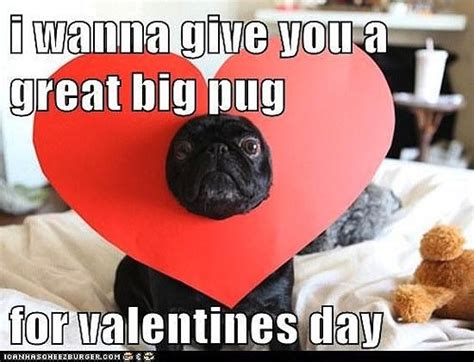 Valintines Day Meme - 17 funniest valentines day memes freshmorningquotes