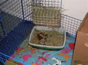 diy hay rack binkybunny house rabbit information