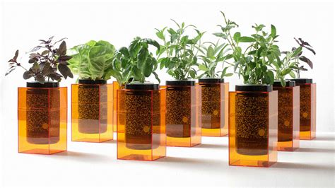 Hydroponic Planters by Grow Hydroponic Crops On Your Desk With These Nasa