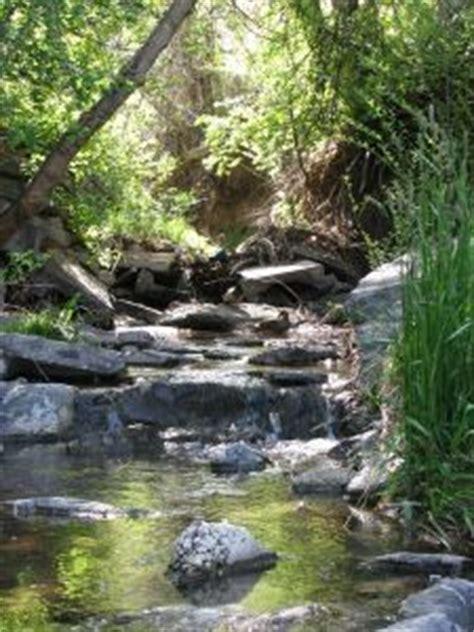 how to build a backyard stream how to build a self fed backyard stream wish wish wish