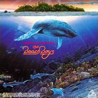 boys surfin summer in paradise boys rock groups page