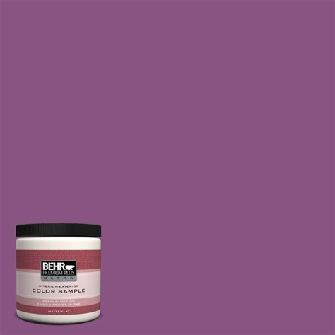 behr premium plus ultra 8 oz home decorators collection dynamic magenta interior exterior paint