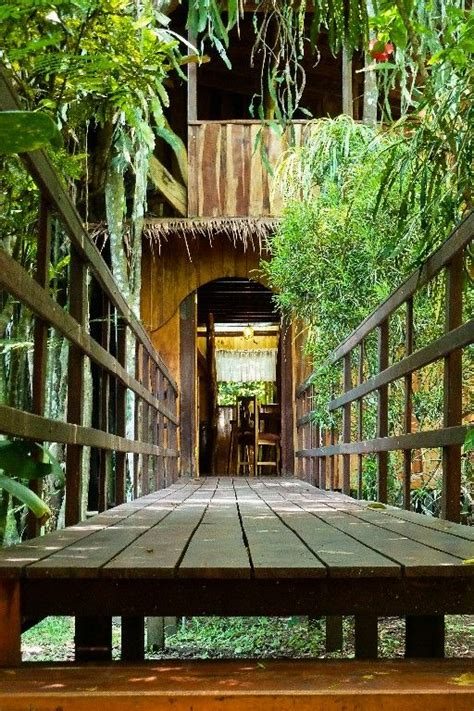 treehouse vacations 25 best images about treehouse vacations on pinterest