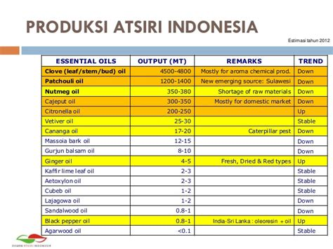 50ml Minyak Kayu Manis Cinnamon Bark Essential Oils 100 essentail market in indonesia by arianto mulyadi
