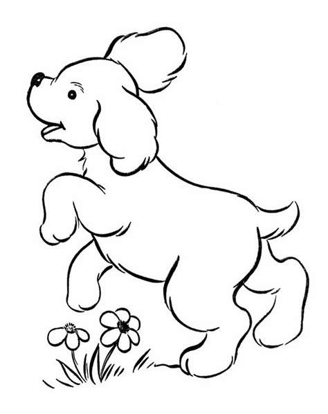 ayo mewarnai mewarnai gambar anjing
