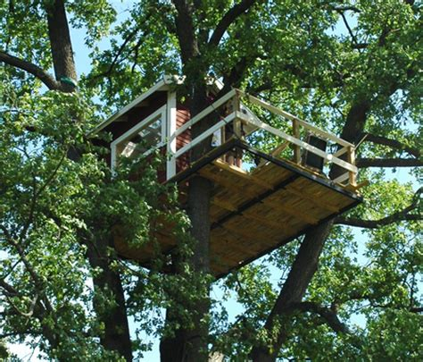 tree house designs simple simple tree house designs image search results