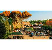 Gardaland How To Get There From Toscana  Sitabusit