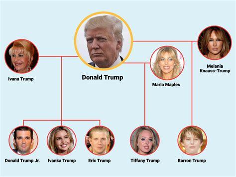 donald trump family tree donald trump s family tree business insider