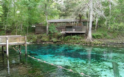 fanning springs state park 10 paranormal swimming holes in florida