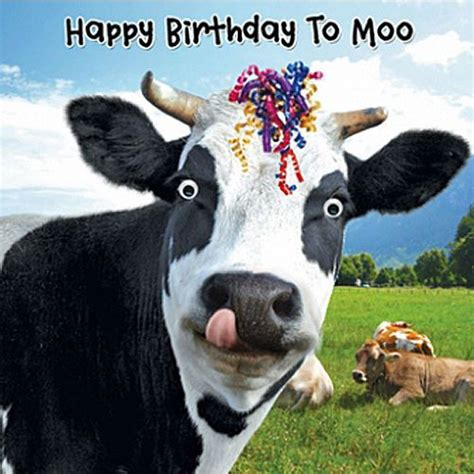 Moo Meme - details about funny cow streamers birthday card happy