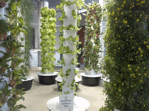 ohares hydroponic gardens hydroponic gardening system