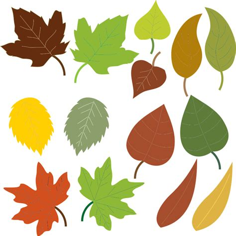 leaf clipart free to use domain leaves clip