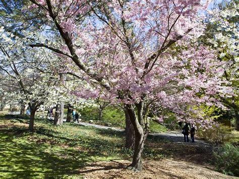 Prospect Park Botanical Gardens Botanic Garden Attractions In Prospect Park