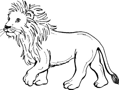 coloring pictures of lion cubs coloring a young lion cub picture coloring pages pinterest