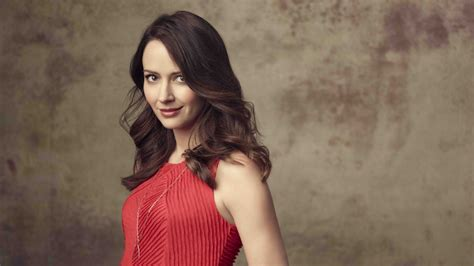 cute wallpapers hd actress full hd wallpaper amy acker brown hair smile cute actress