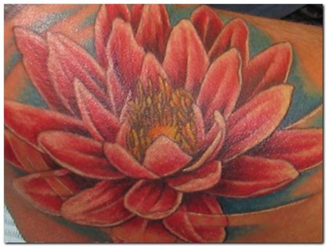 tattoo removal cambridge 42 best images about ink on pink lotus