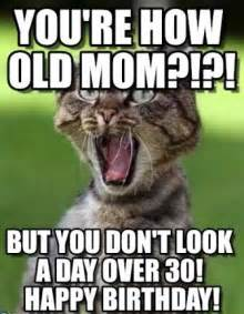 Mom Birthday Meme - funny happy birthday cat meme 2happybirthday