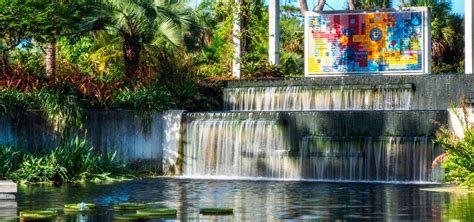 Naples Botanical Gardens Coupons Best Coupons To Must See Top 10 Attractions In Naples Fl Must Do Visitor Guides