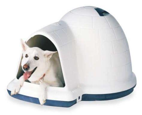 petmate indigo house cool and stylish doghouses feminiyafeminiya