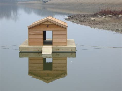 how to build a duck house plans 1000 ideas about duck house on pinterest duck coop duck pens and coops