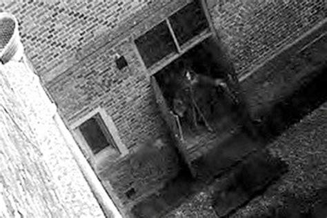imagenes increibles de fantasmas fotos de fantasmas reales