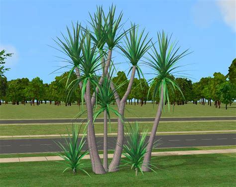 mod  sims realistic plant cordyline australis