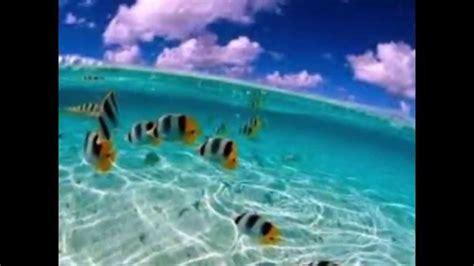imagenes naturales reales paisajes reales en todo el mundo youtube