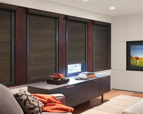 Blackout Window Treatments Contemporary Home Theater