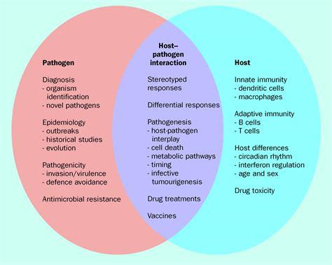 venn diagram of virus and bacteria venn diagram bacteria and viruses gallery how to guide