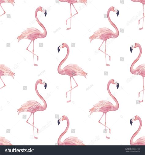 watercolor flamingos pattern vector free download watercolor vector seamless pattern exotic flamingo stock