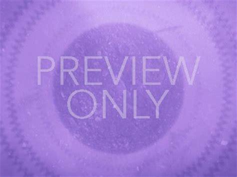 muted purple muted echoes purple playback media mediashout store