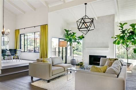 plant decoration in living room bigger is better at least when it comes to house plants mannigan edwards interiors
