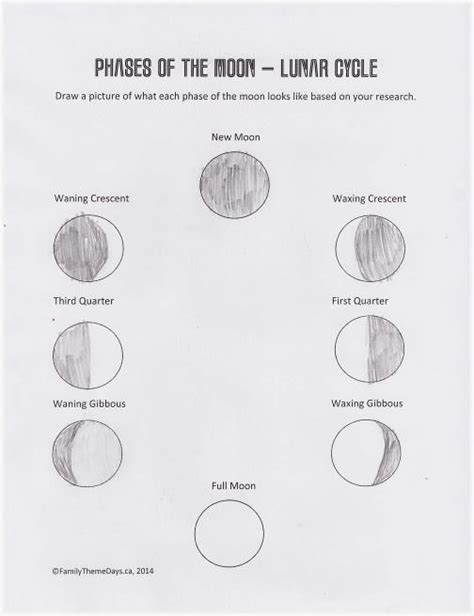 Moon Phases Worksheet by Moon Phases Worksheet Free Printable The Moon Lunar