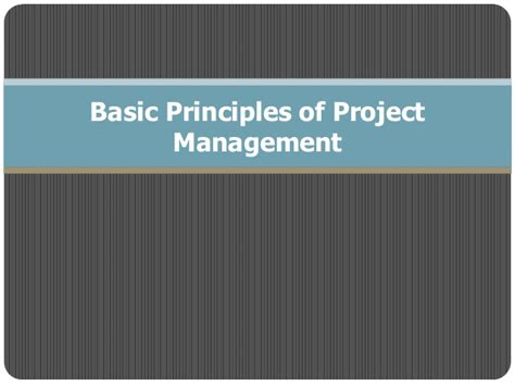 Mba 101 Principles And Practice Of Management by Basic Principles Of Project Management