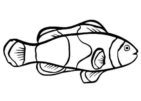 coloring page of small fish small fish template coloring home