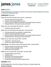 Resume Sample For Professional professional resume sample