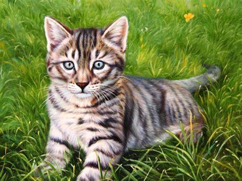imagenes de jardines con gatos im 225 genes arte pinturas gato en jardin